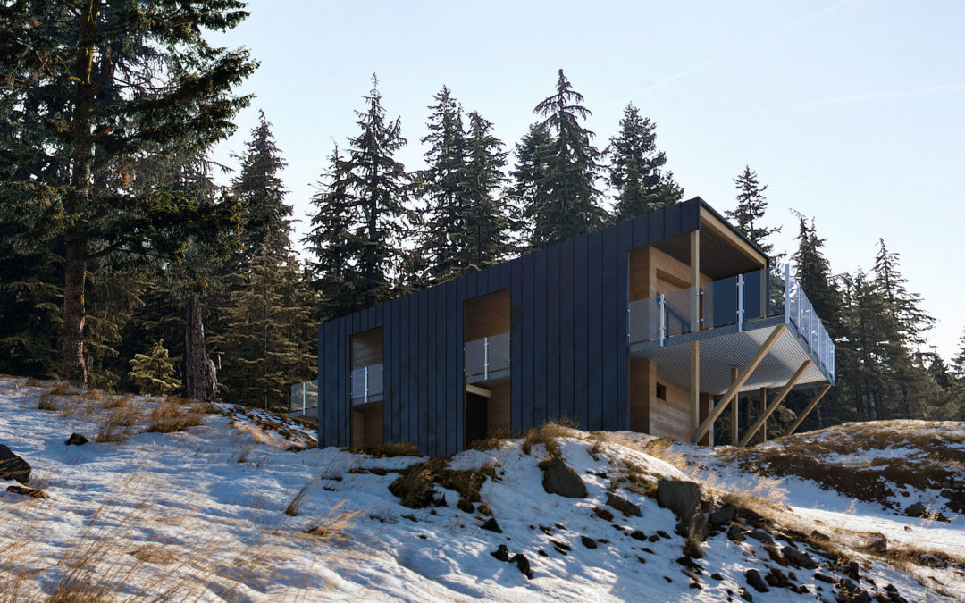 PERKINS & WILL_Mountain Residence_To the Top