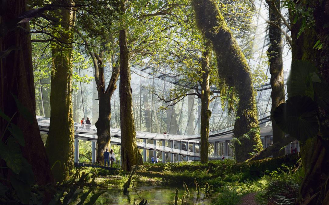 SHL_Kunming National Botanic Museum_Rain Forest Riverbed