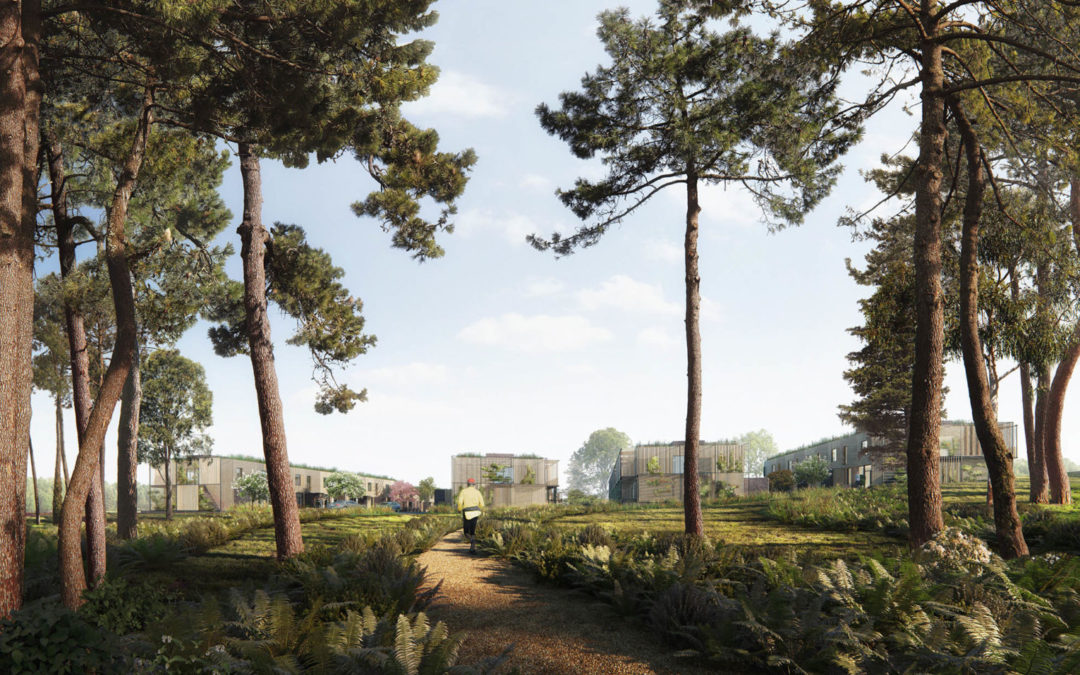 White Arkitekter housing competition in Alleroed